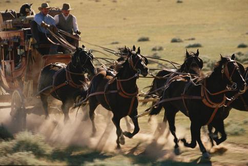 Calul din rândul doi